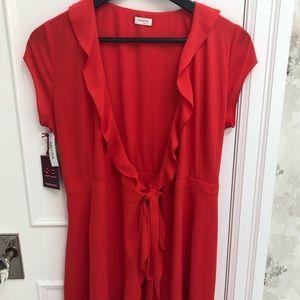 Aritzia-Sunday Best- Savoy Dress